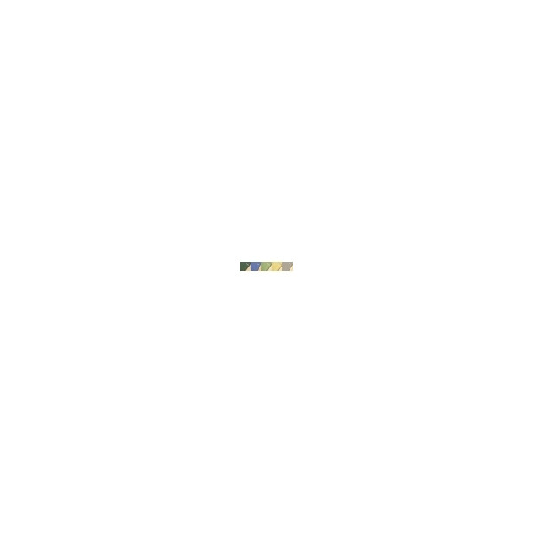 Bâche couverture hivernage à barres Astral Evo PRO Piscine 11 x 5.5 mètres