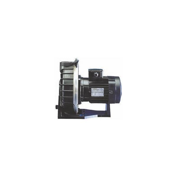 Pompe pour Balnéothérapie Booster Challenger 3 cv Mono 34 m3/h