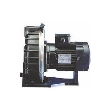 Pompe pour Balnéothérapie Booster Challenger 1,5 cv Tri 18 m3/h
