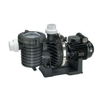 Pompe filtration STA-RITE Série SW5P6R 1,5 cv tri - Eau de mer