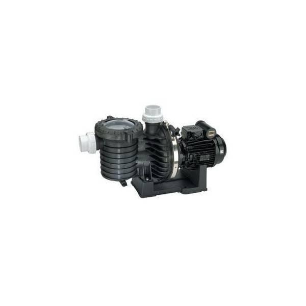 Pompe filtration STA-RITE Série SW5P6R 1 cv tri - Eau de mer