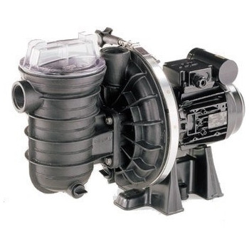 Pompe filtration STA-RITE Série S5P2R 0,75 cv mono - Eau salée