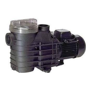 Pompe Filtration Delfino AEP 2 cv tri