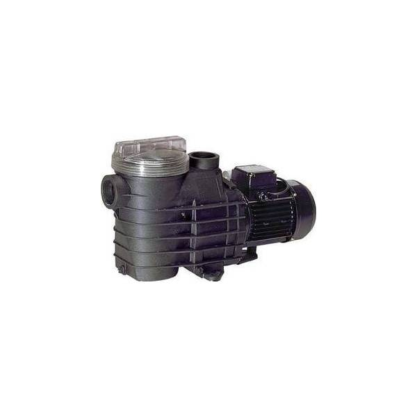 Pompe Filtration Delfino AEP 1 cv tri